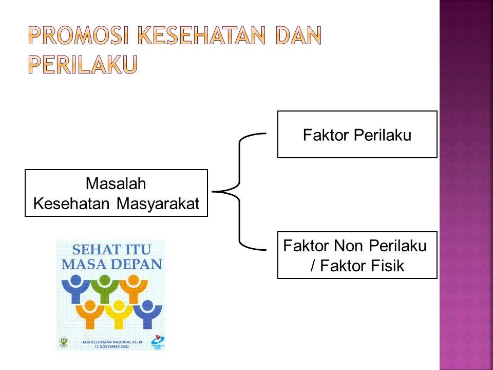 Masalah Kesehatan Masyarakat Faktor Perilaku Faktor Non Perilaku / Faktor Fisik