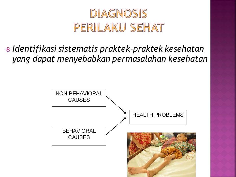 22  Identifikasi sistematis praktek-praktek kesehatan yang dapat menyebabkan permasalahan kesehatan