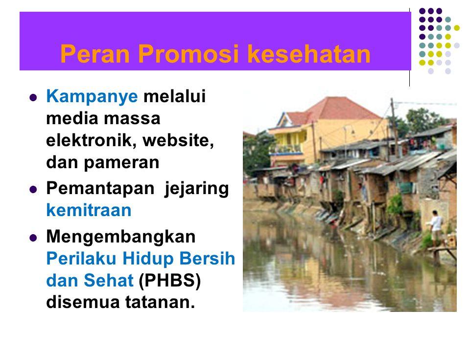  Kampanye melalui media massa elektronik, website, dan pameran  Pemantapan jejaring kemitraan  Mengembangkan Perilaku Hidup Bersih dan Sehat (PHBS)