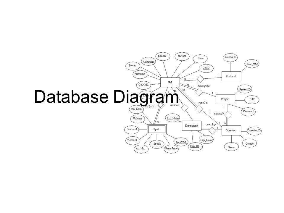 Database Diagram