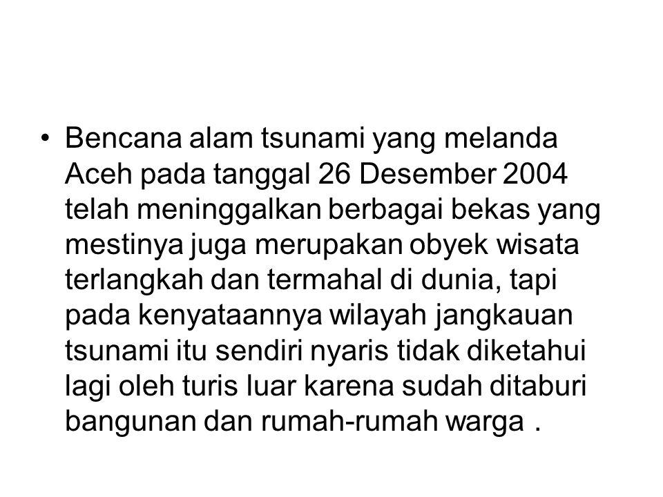 •Selain objek wisata stunami, di Aceh mestinya juga ada dan terpelihara tempat- tempat yang dianggap basis konflik baik masa Operasi Militer (DOM) maupun Darurat Militer (DM), yang kemudian bisa dijadikan obyek wisata seperti Rumoh Geudong, Bukit Tengkorak, Rawa Cot Trieng dan lain sebagainya , tapi semuanya sekarang tidak ada yang dijadikan obyek wisata.