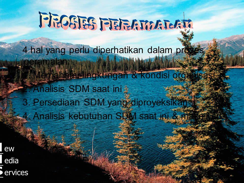 •Faktor Internal Sebagai Sebab Permintaan SDM :  Faktor Renstra & Renop  Faktor Produksi & Penjualan  Faktor Pembiayaan SDM  Faktor Desain Organis