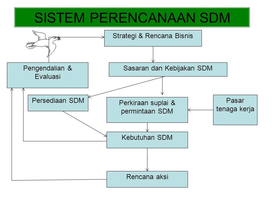 Fungsi 2.1 Pandangan-pandangan Tradisional & Strategi PSDM (b) PSDM Pandangan Strategis Sasaran Strategis Penelitian dan Pengembangan KeuanganMSDMPemasaranProduksi