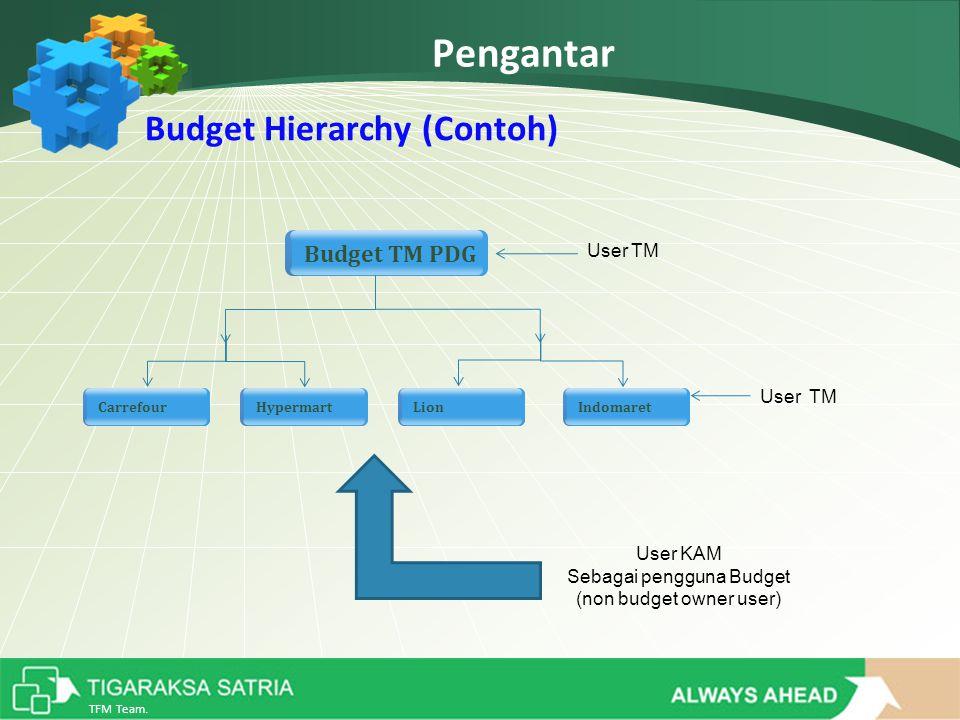 TFM Team. Pengantar Budget TM PDG CarrefourLionIndomaretHypermart User TM User KAM Sebagai pengguna Budget (non budget owner user) Budget Hierarchy (C