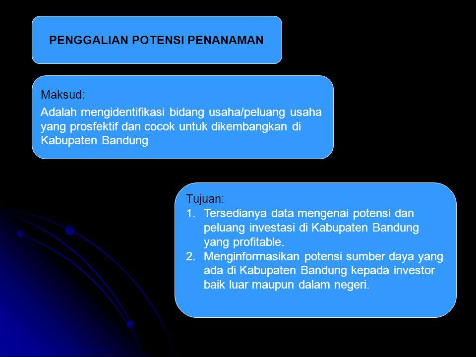PENGGALIAN POTENSI PENANAMAN Maksud: Adalah mengidentifikasi bidang usaha/peluang usaha yang prosfektif dan cocok untuk dikembangkan di Kabupaten Bandung Tujuan: 1.Tersedianya data mengenai potensi dan peluang investasi di Kabupaten Bandung yang profitable.