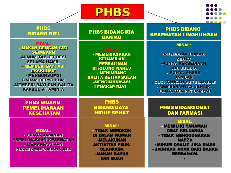 PHBS Di Rumah Tangga adalah upaya untuk memberdayakan anggota rumah tangga agar tahu, mau dan mampu mempraktikkan perilaku hidup bersih dan sehat serta berperan aktif dalam gerakan kesehatan di masyarakat