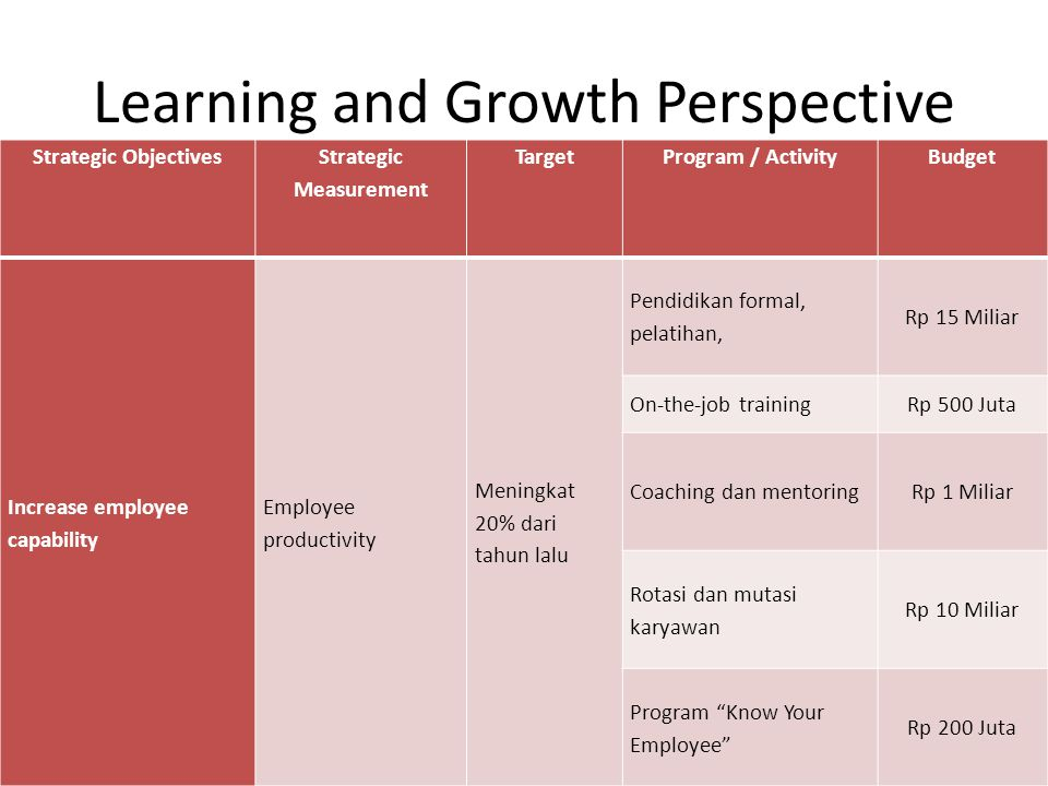Learning and Growth Perspective Strategic Objectives Strategic Measurement TargetProgram / ActivityBudget Increase employee capability Employee produc