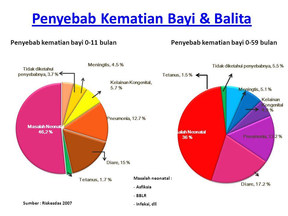 Penyebab kematian bayi 0-11 bulanPenyebab kematian bayi 0-59 bulan Sumber : Riskesdas 2007 Pneumonia, 12.7 % Diare, 15 % Masalah Neonatal 46,2 % Menin