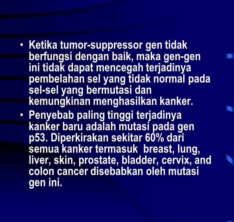 • Ketika tumor-suppressor gen tidak berfungsi dengan baik, maka gen-gen ini tidak dapat mencegah terjadinya pembelahan sel yang tidak normal pada sel-