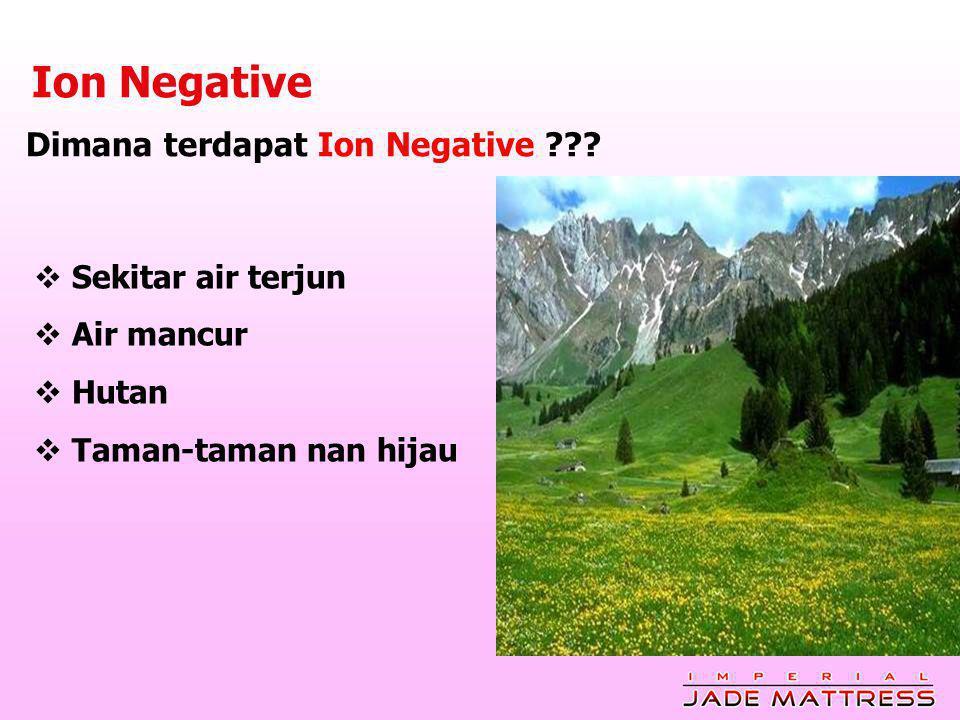 Dimana terdapat Ion Negative ??.