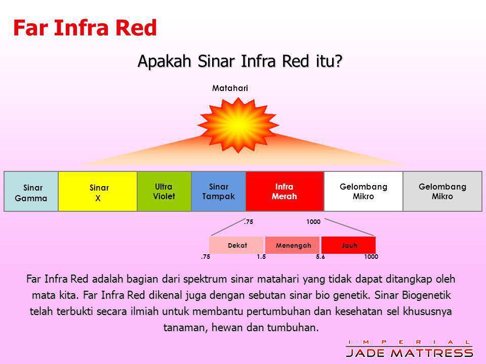 Apakah Sinar Infra Red itu.