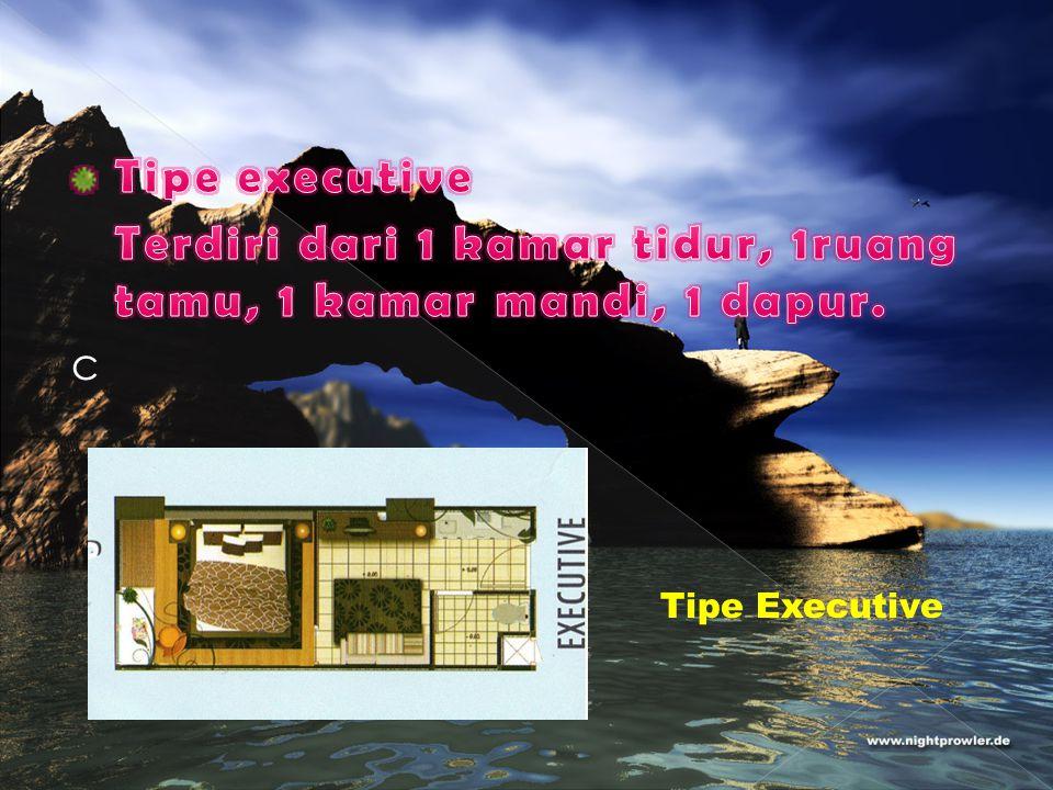 Tipe Executive