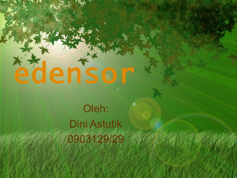 edensor Oleh: Dini Astutik 0903129/29