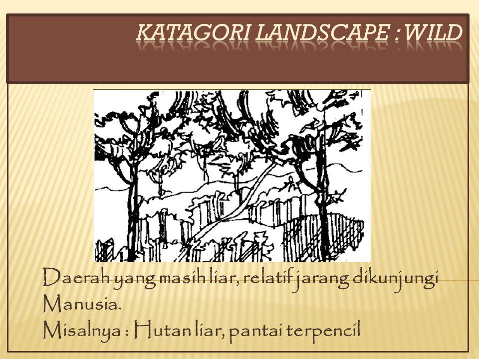 Contoh yang jarang terjadi dimana terdapat hubungan langsung antara dua golongan landscape yaitu daerah perkampungan dengan daerah luar kota.