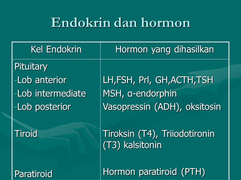 Jumlah Reseptor •Down-regulation: penurunan jumlah reseptor hormon yang menurunkan sensitivitas terhadap hormon tersebut •Up-regulation: peningkatan j