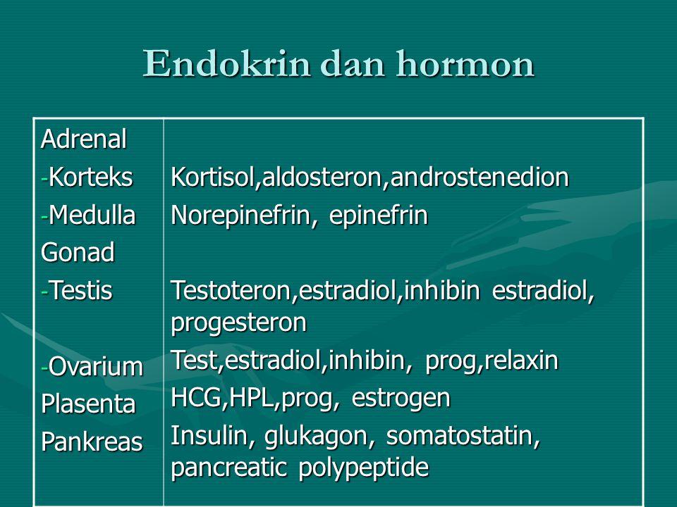 Endokrin dan hormon Kel Endokrin Hormon yang dihasilkan Pituitary - Lob anterior - Lob intermediate - Lob posterior TiroidParatiroid LH,FSH, Prl, GH,ACTH,TSH MSH, α-endorphin Vasopressin (ADH), oksitosin Tiroksin (T4), Triiodotironin (T3) kalsitonin Hormon paratiroid (PTH)