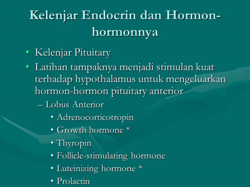 Kelenjar Endocrin dan Hormon- hormonnya •Kelenjar Pituitary –Kelenjar seukuran kelereng terletak di bagian basal otak –Dikendalikan oleh hypothalamus atau mekanisme neural lainnya •Lobus Posterior –Antidiuretic hormone (ADH): bertanggungjawab untuk retensi cairan –Oxytocin: kontraksi uterus