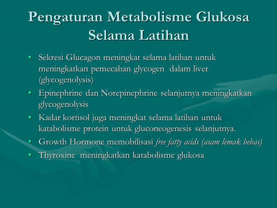 Respons Endocrine terhadap Latihan •Table 5.3 Page 172