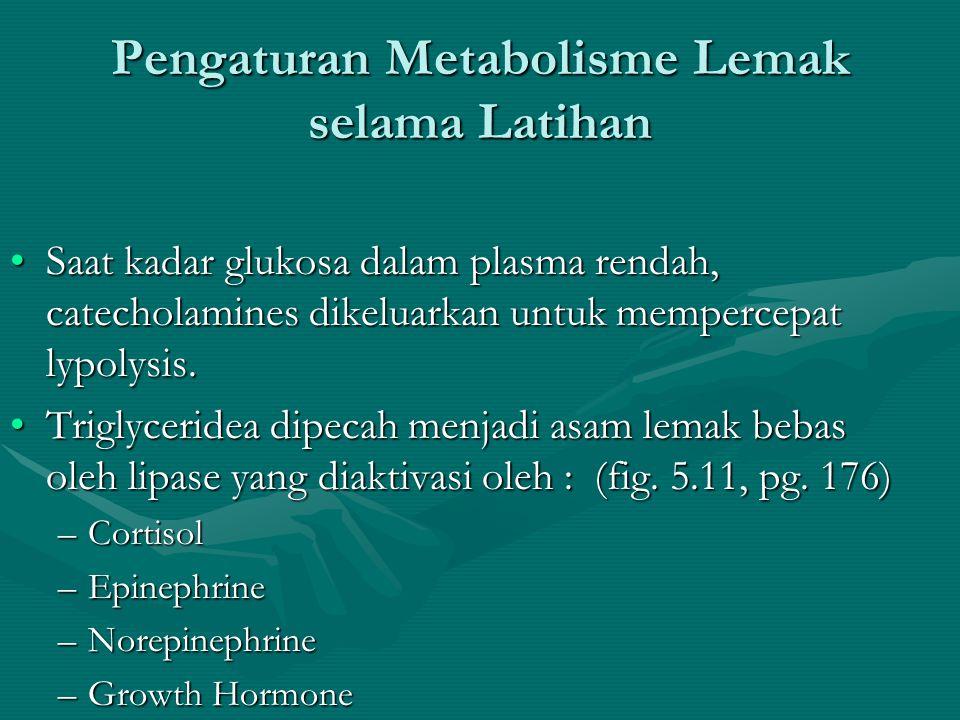 Pengaturan Metabolisme Glukosa Selama Latihan •Glucose hanya diantar ke sel-sel, namun juga harus diambil oleh sel. That job relies on insulin. •Exerc