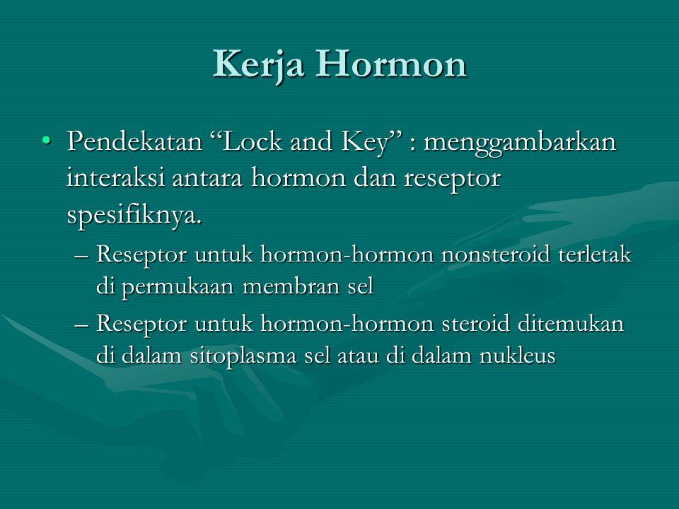 Kerja Hormon •Pendekatan Lock and Key : menggambarkan interaksi antara hormon dan reseptor spesifiknya.