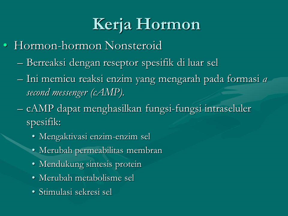 Kerja Hormon •Hormon-hormon Nonsteroid –Berreaksi dengan reseptor spesifik di luar sel –Ini memicu reaksi enzim yang mengarah pada formasi a second messenger (cAMP).
