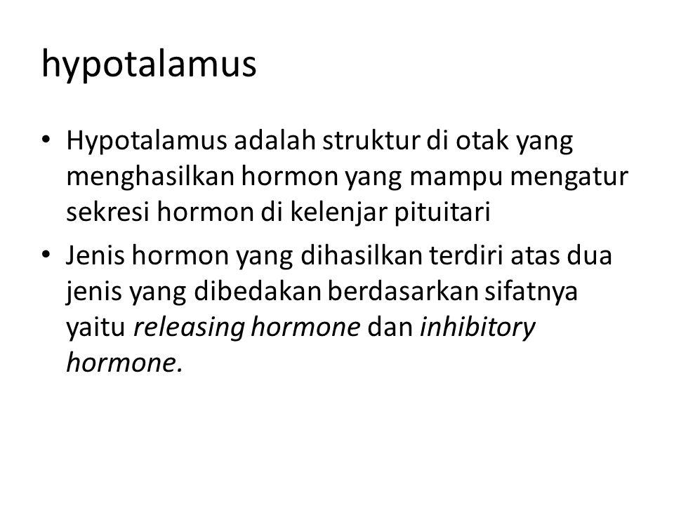 hypotalamus • Hypotalamus adalah struktur di otak yang menghasilkan hormon yang mampu mengatur sekresi hormon di kelenjar pituitari • Jenis hormon yang dihasilkan terdiri atas dua jenis yang dibedakan berdasarkan sifatnya yaitu releasing hormone dan inhibitory hormone.