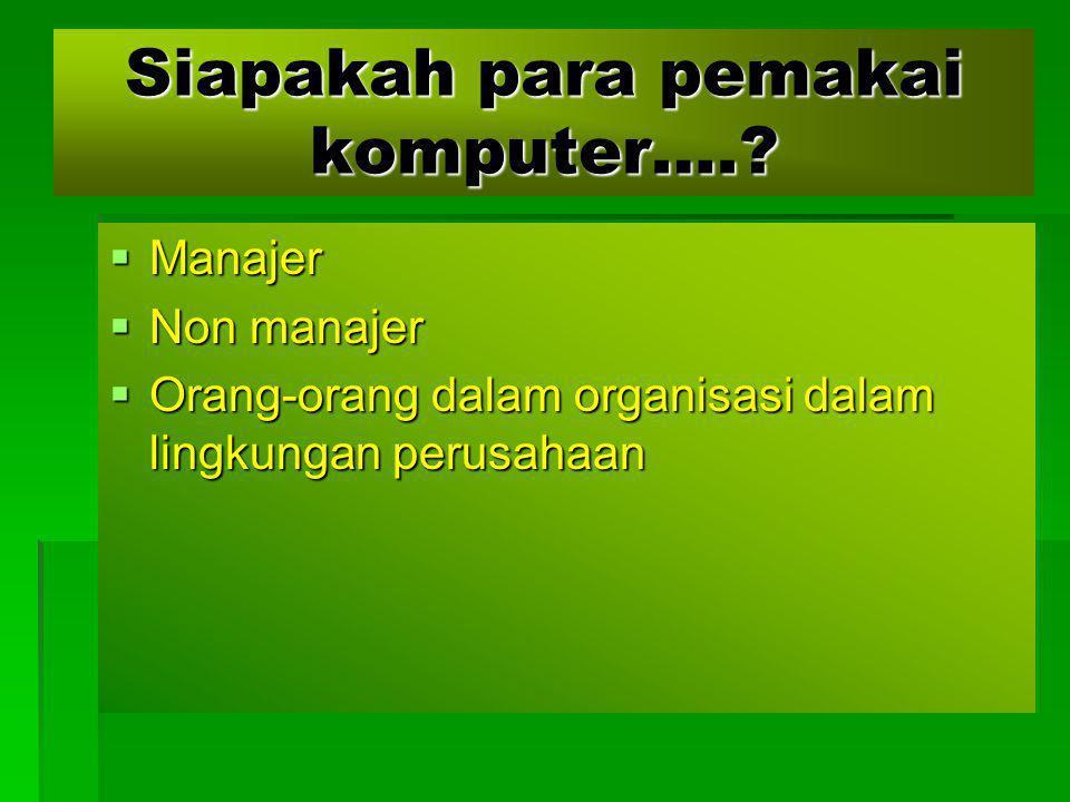 Siapakah para pemakai komputer….?  Manajer  Non manajer  Orang-orang dalam organisasi dalam lingkungan perusahaan