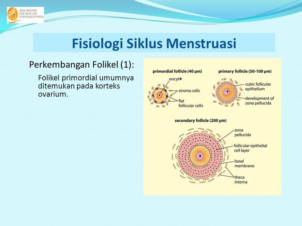Perkembangan Folikel (1): Folikel primordial umumnya ditemukan pada korteks ovarium.