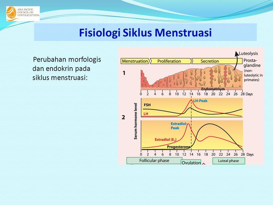 Perubahan morfologis dan endokrin pada siklus menstruasi: Fisiologi Siklus Menstruasi