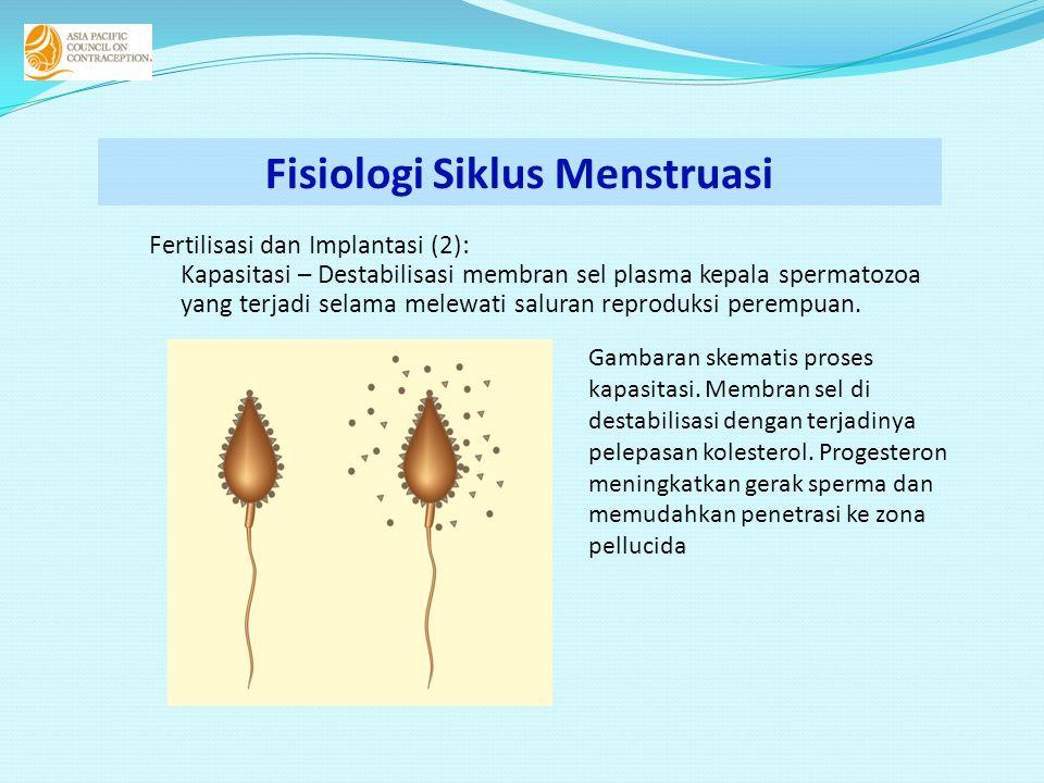 Fertilisasi dan Implantasi (2): Kapasitasi – Destabilisasi membran sel plasma kepala spermatozoa yang terjadi selama melewati saluran reproduksi perempuan.
