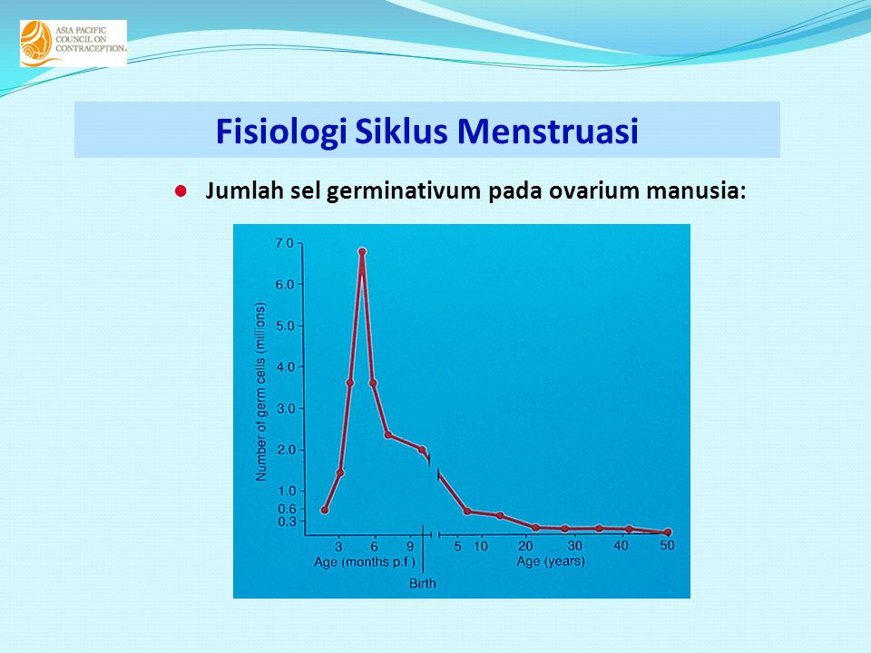  Jumlah sel germinativum pada ovarium manusia: Fisiologi Siklus Menstruasi
