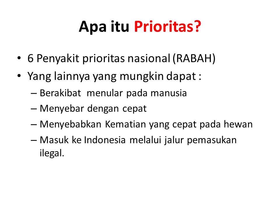 Apa itu Prioritas? • 6 Penyakit prioritas nasional (RABAH) • Yang lainnya yang mungkin dapat : – Berakibat menular pada manusia – Menyebar dengan cepa