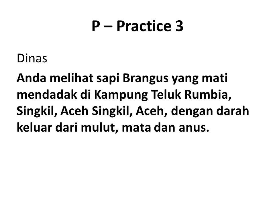 P – Practice 3 Dinas Anda melihat sapi Brangus yang mati mendadak di Kampung Teluk Rumbia, Singkil, Aceh Singkil, Aceh, dengan darah keluar dari mulut