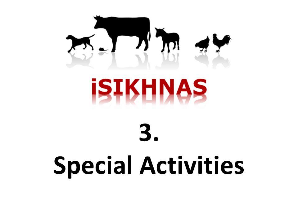 3. Special Activities