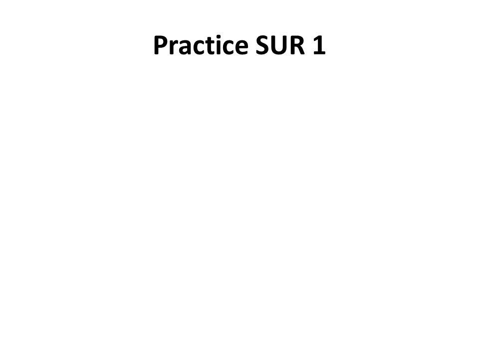 Practice SUR 1