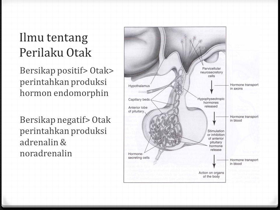 Ilmu tentang Perilaku Otak Bersikap positif> Otak> perintahkan produksi hormon endomorphin Bersikap negatif> Otak perintahkan produksi adrenalin & nor