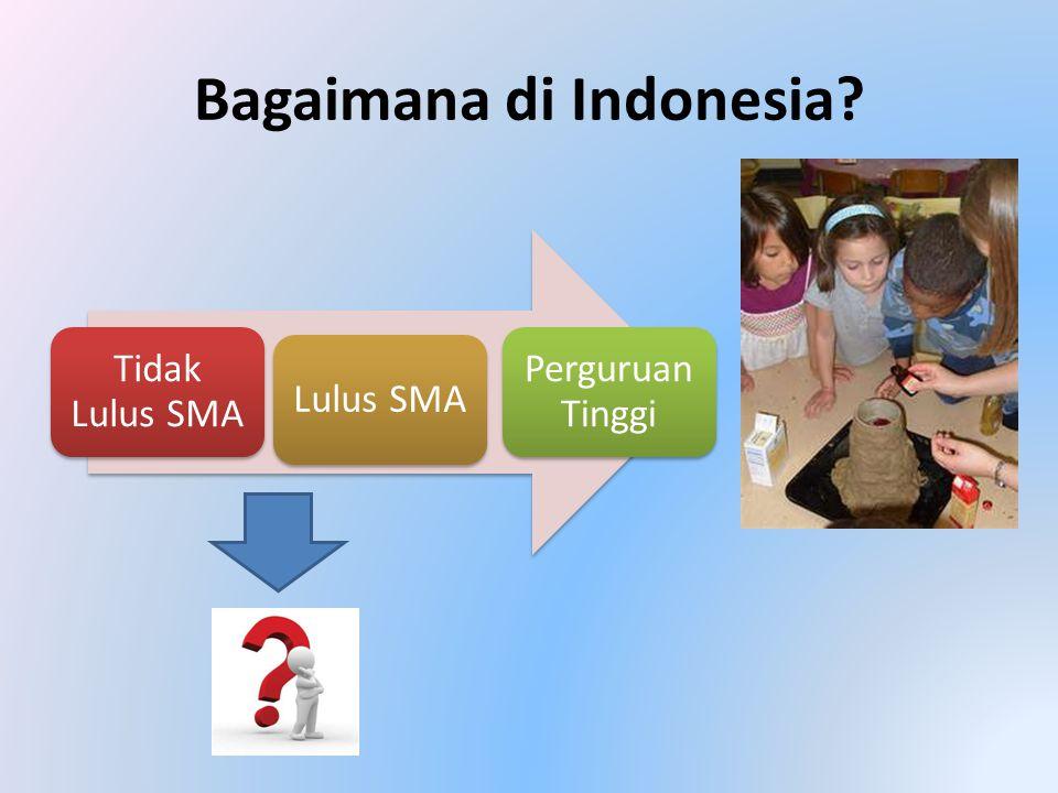 Bagaimana di Indonesia? Tidak Lulus SMA Lulus SMA Perguruan Tinggi