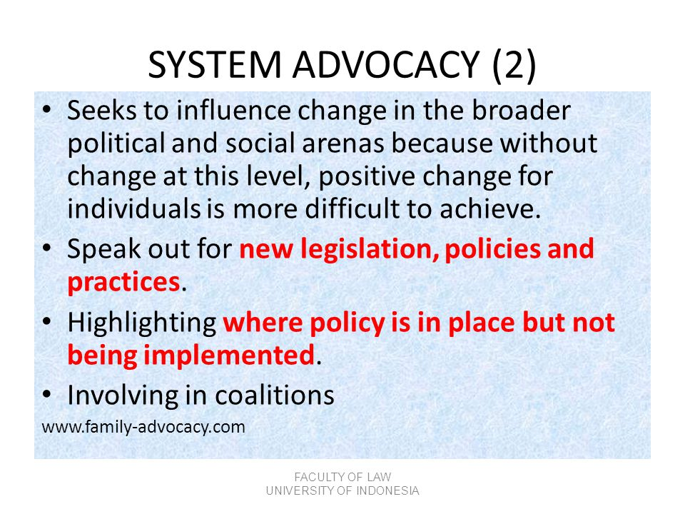 SYSTEM ADVOCACY (2) • Seeks to influence change in the broader political and social arenas because without change at this level, positive change for i