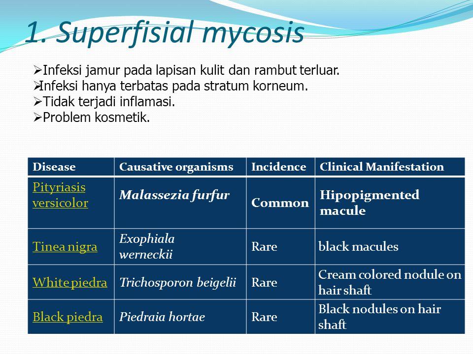 1. Superfisial mycosis DiseaseCausative organismsIncidenceClinical Manifestation Pityriasis versicolor Malassezia furfur Common Hipopigmented macule T