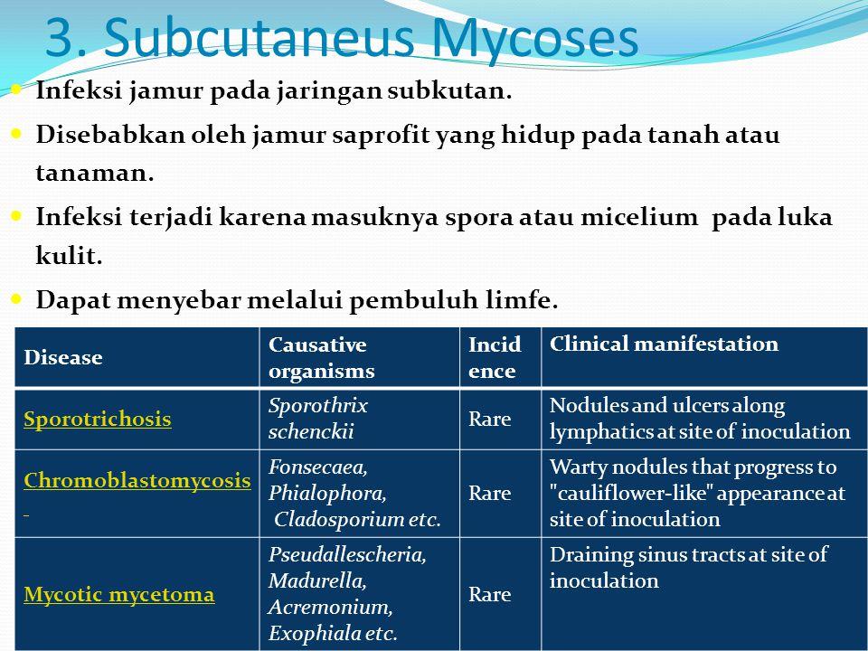 3. Subcutaneus Mycoses  Infeksi jamur pada jaringan subkutan.  Disebabkan oleh jamur saprofit yang hidup pada tanah atau tanaman.  Infeksi terjadi