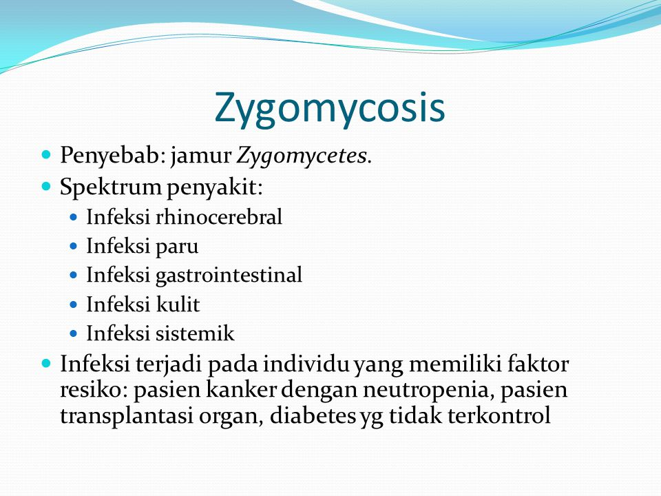 Zygomycosis  Penyebab: jamur Zygomycetes.  Spektrum penyakit:  Infeksi rhinocerebral  Infeksi paru  Infeksi gastrointestinal  Infeksi kulit  In
