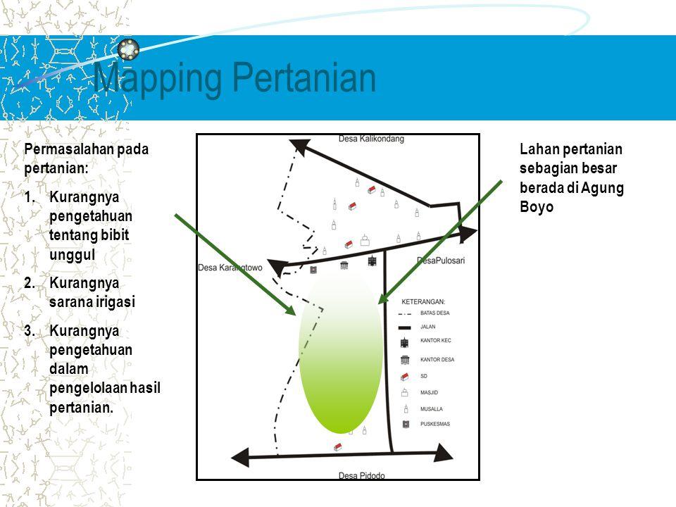 Mapping Pertanian Lahan pertanian sebagian besar berada di Agung Boyo Permasalahan pada pertanian: 1.Kurangnya pengetahuan tentang bibit unggul 2.Kurangnya sarana irigasi 3.Kurangnya pengetahuan dalam pengelolaan hasil pertanian.
