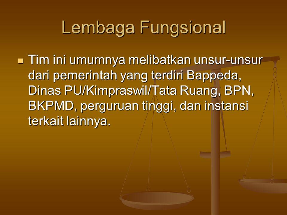 Lembaga Fungsional  Tim ini umumnya melibatkan unsur-unsur dari pemerintah yang terdiri Bappeda, Dinas PU/Kimpraswil/Tata Ruang, BPN, BKPMD, pergurua