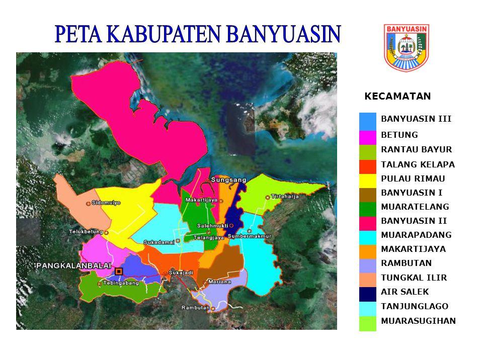 KECAMATAN BANYUASIN III BETUNG RANTAU BAYUR TALANG KELAPA PULAU RIMAU BANYUASIN I MUARATELANG BANYUASIN II MUARAPADANG MAKARTIJAYA RAMBUTAN TUNGKAL IL