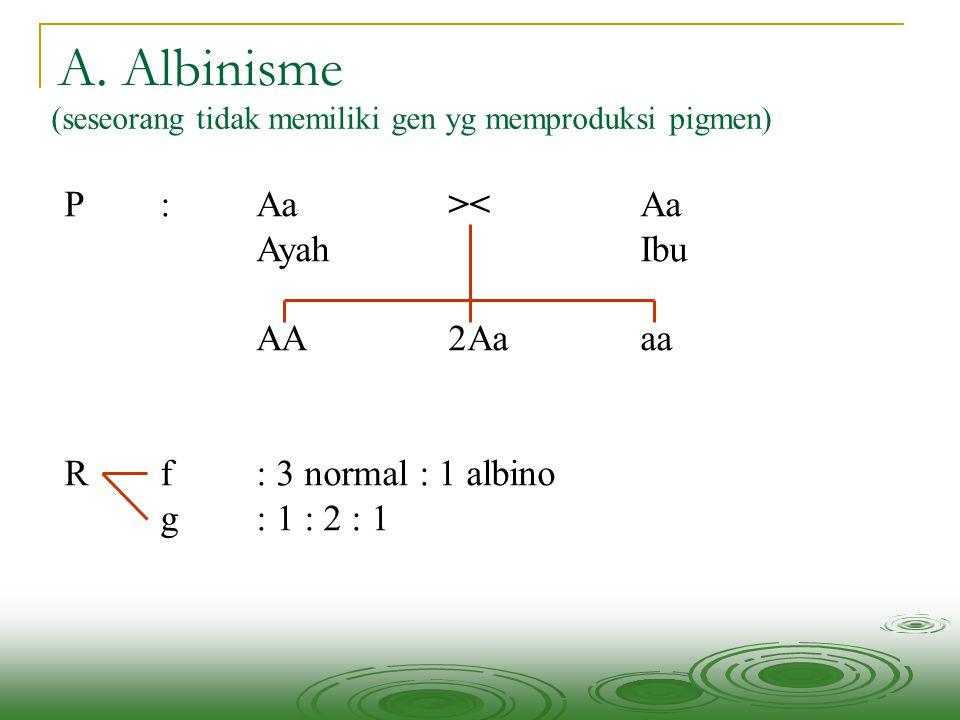 A. Albinisme (seseorang tidak memiliki gen yg memproduksi pigmen) P: Aa><Aa AyahIbu AA2Aaaa Rf : 3 normal : 1 albino g : 1 : 2 : 1