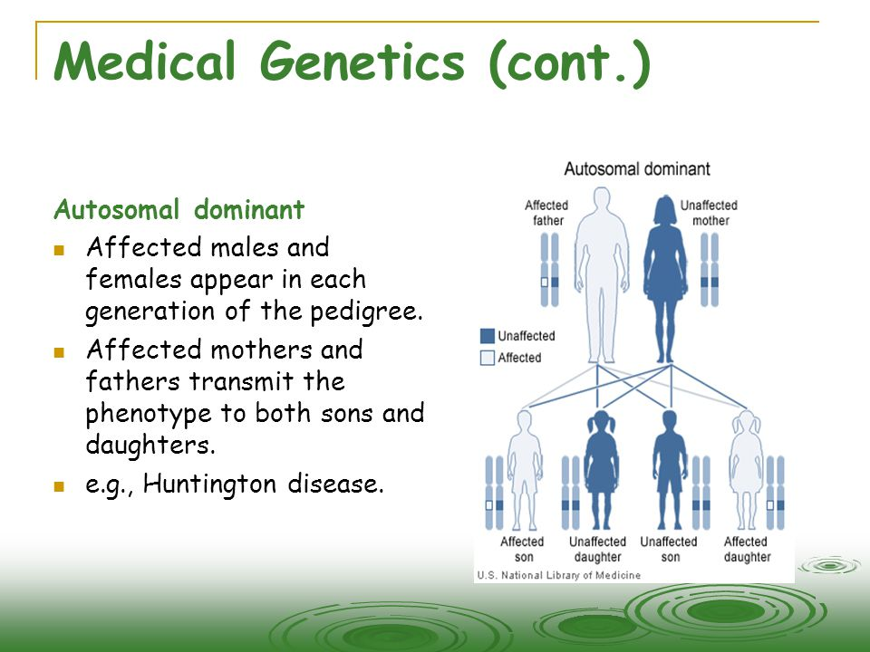 Medical Genetics (cont.) Autosomal dominant  Affected males and females appear in each generation of the pedigree.  Affected mothers and fathers tra