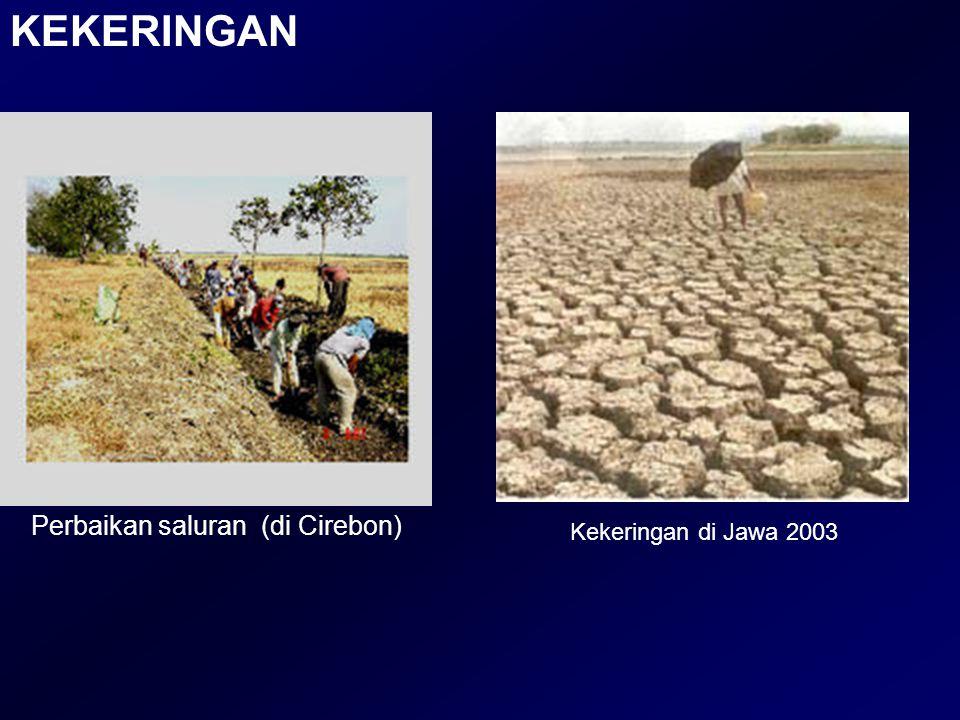 KEKERINGAN Kekeringan di Jawa 2003 Perbaikan saluran (di Cirebon)
