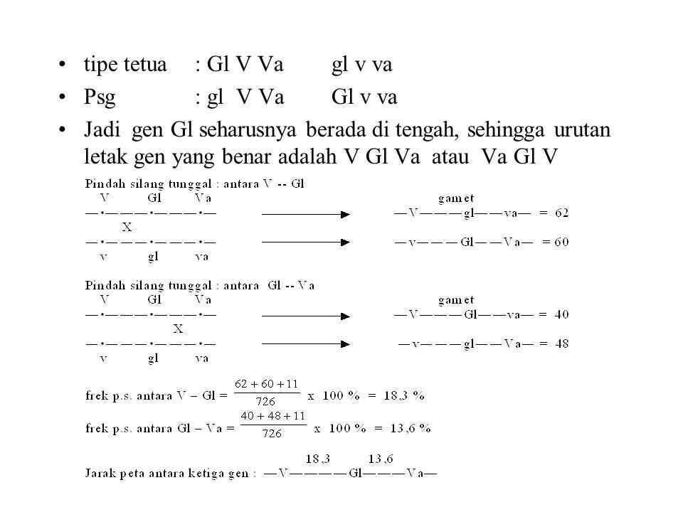 •tipe tetua : Gl V Vagl v va •Psg : gl V VaGl v va •Jadi gen Gl seharusnya berada di tengah, sehingga urutan letak gen yang benar adalah V Gl Va atau