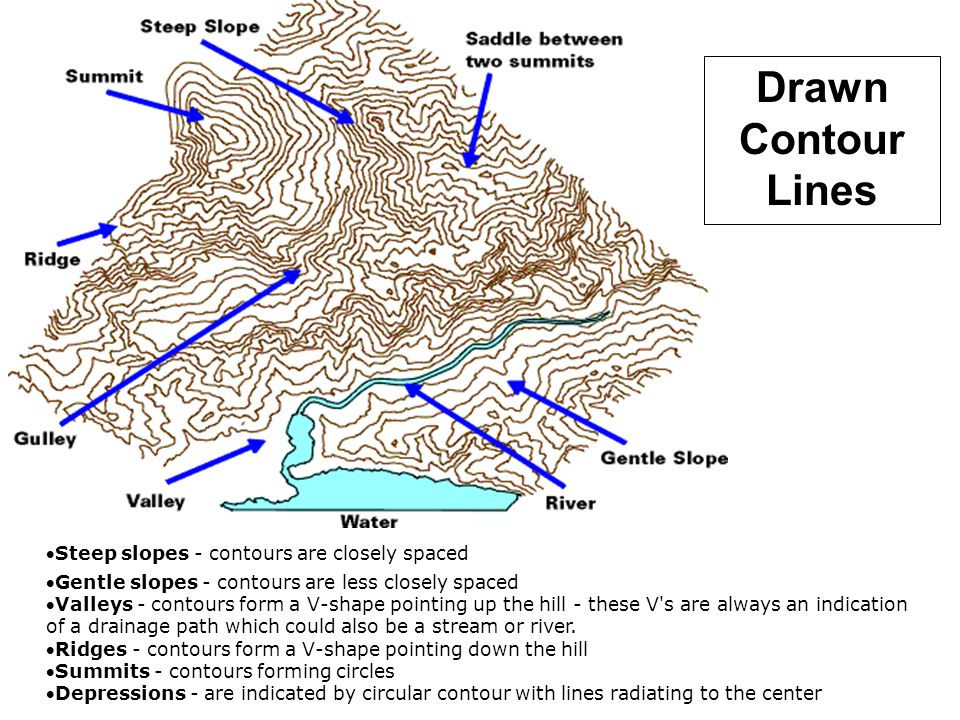 Drawn Contour Lines Steep slopes - contours are closely spaced Gentle slopes - contours are less closely spaced Valleys - contours form a V-shape p