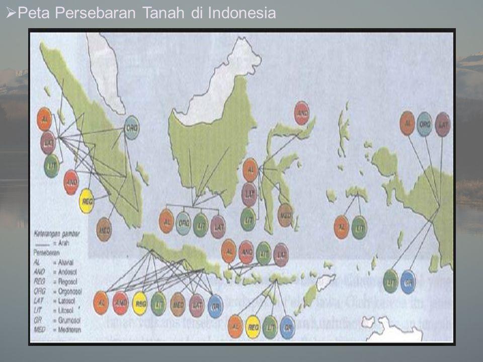  Peta Persebaran Tanah di Indonesia